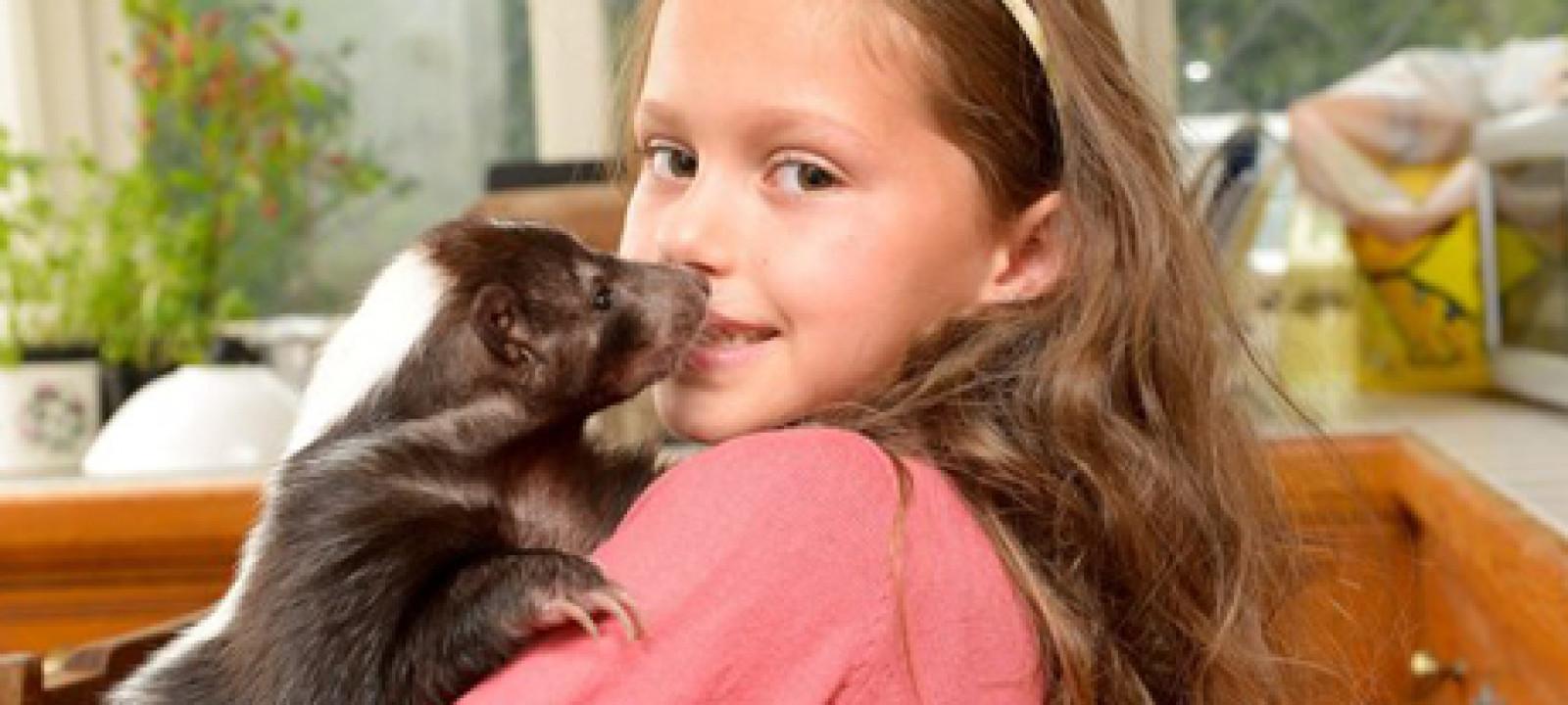 Harriet and Skunk