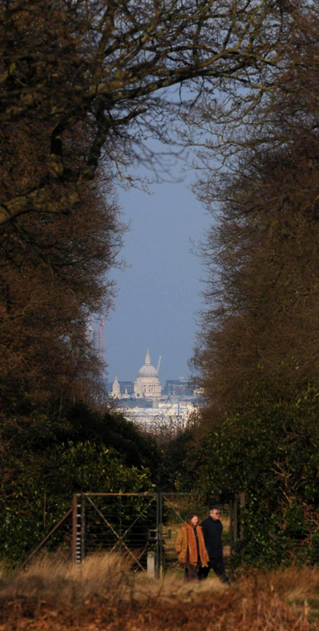St. Paul's Cathedral/Richmond Park. (AP)
