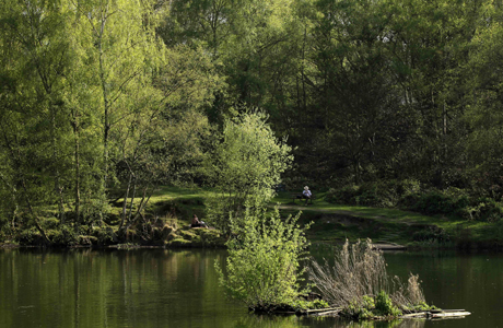 A man reads a book by the pond in Hampstead Heath. (AP)