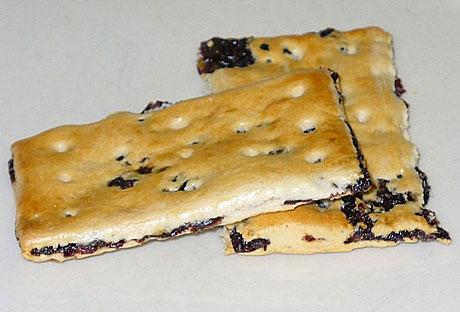 A garibaldi biscuit