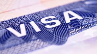 American Visa (XL)