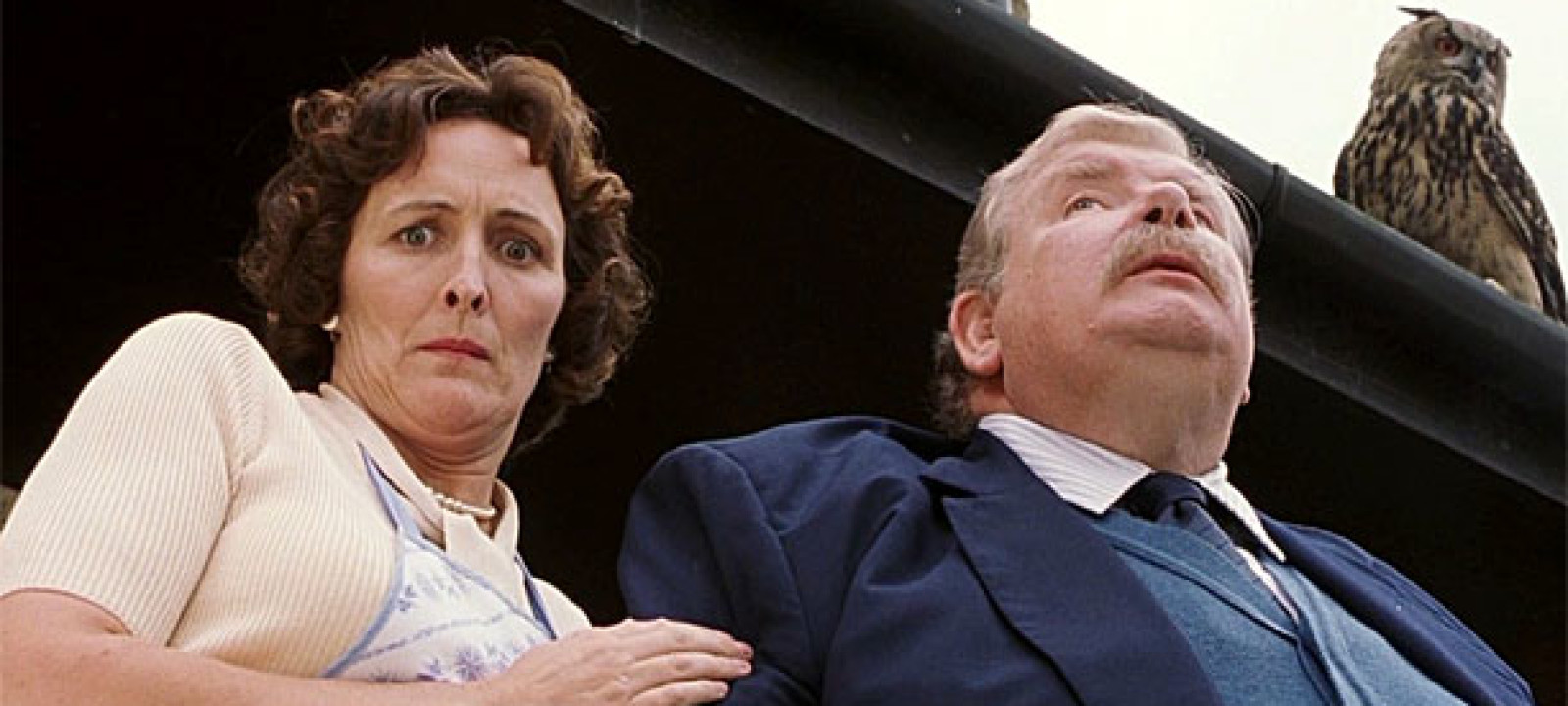 Fiona Shaw as Aunt Petunia Dursley in Harry Potter and the Sorcerer's Stone