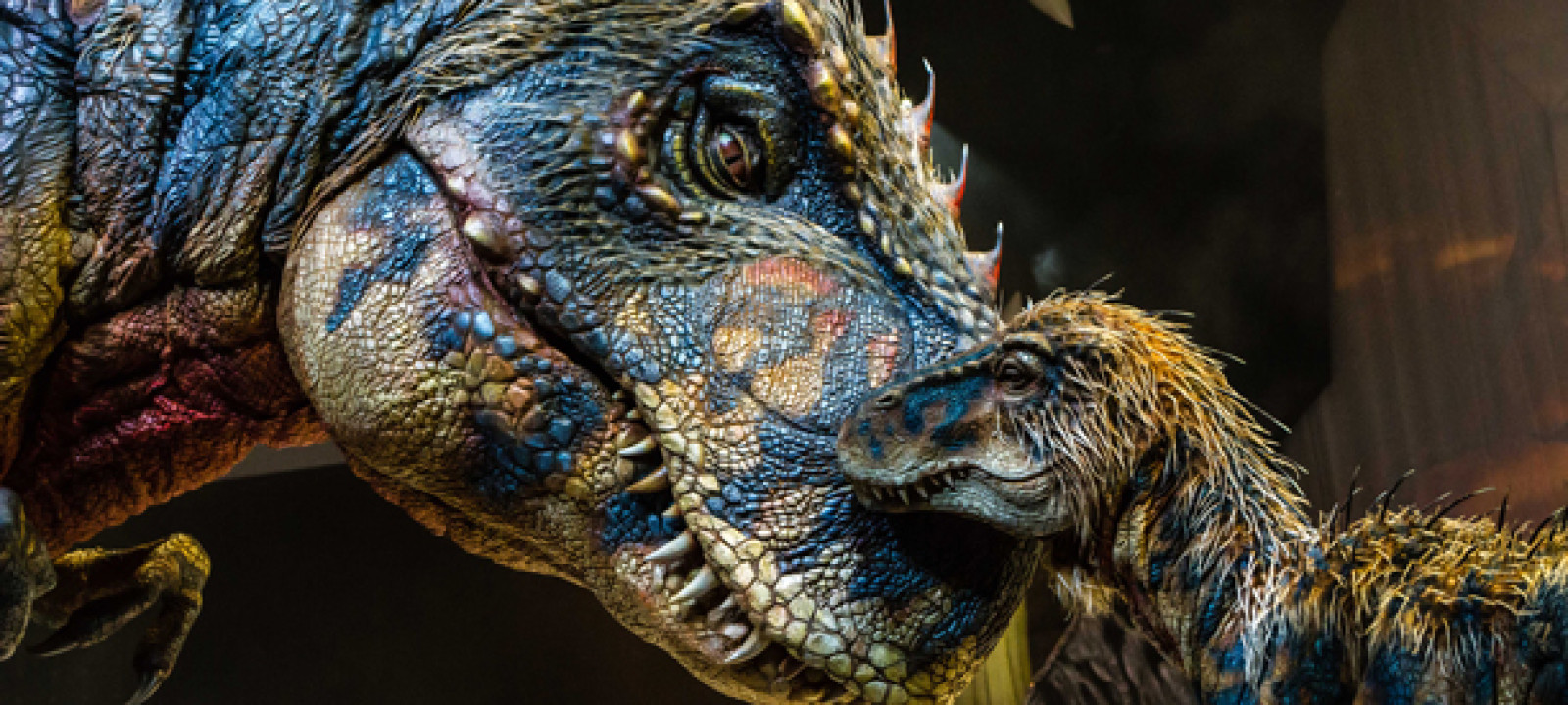 Behind The Scenes Of Walking With Dinosaurs Anglophenia Bbc