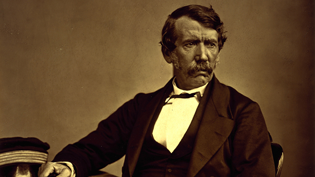 David Livingstone was an XXth century explorer, and celebrated freedom fighter. (Wiki)