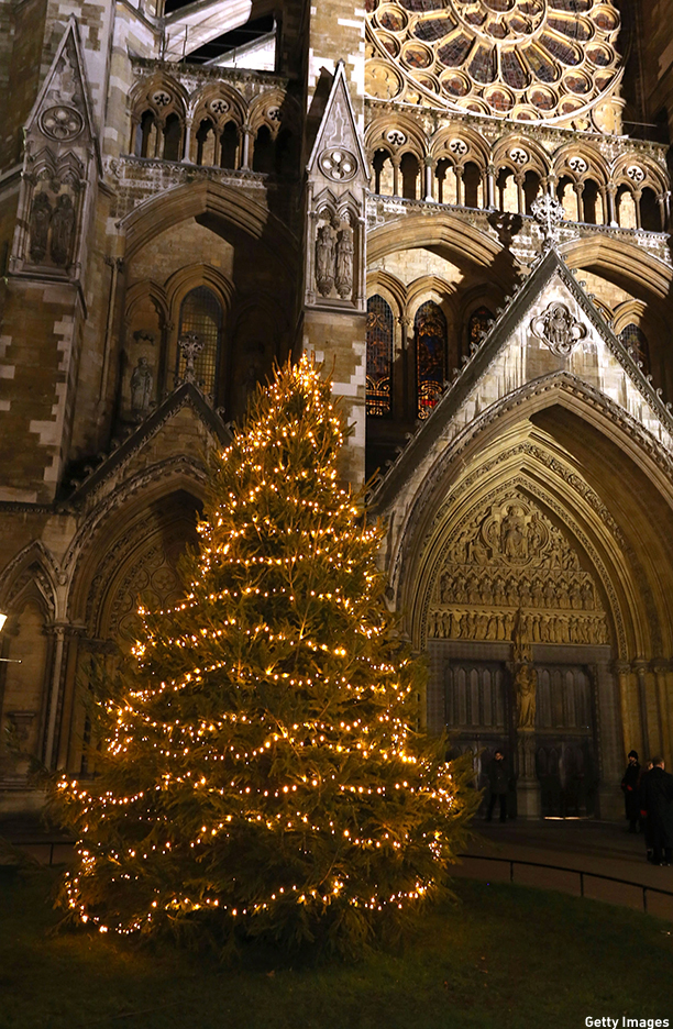 LONDON, ENGLAND - DECEMBER 04:  The Christmas Tree which was blessed and switched on by The Very Reverend Dr John Hall at Westminster Abbey on December 4, 2012 in London, England.  (Photo by Tim Whitby/Getty Images)