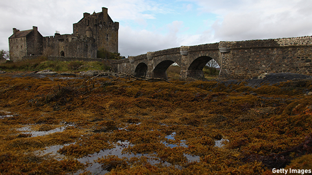 KYLE OF LOCHALSH, UNITED KINGDOM - OCTOBER 25:A view of Eilean Donan Castle, by the Kyle of Lochalsh on October 25, 2010 in Scotland, United Kingdom.  (Photo by Jeff J Mitchell/Getty Images)
