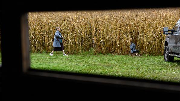 cornfields-596