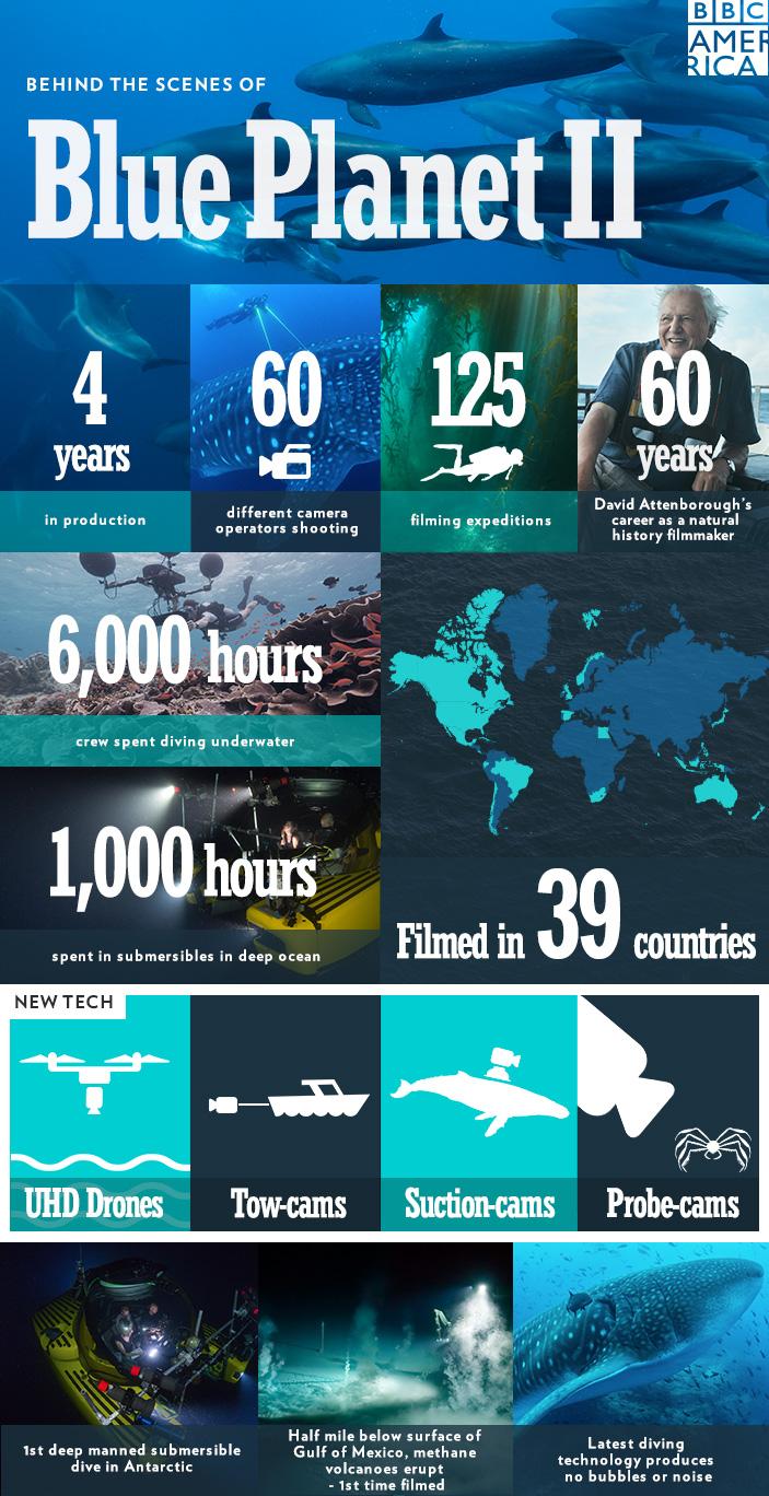 BPII_infographic_bts_1