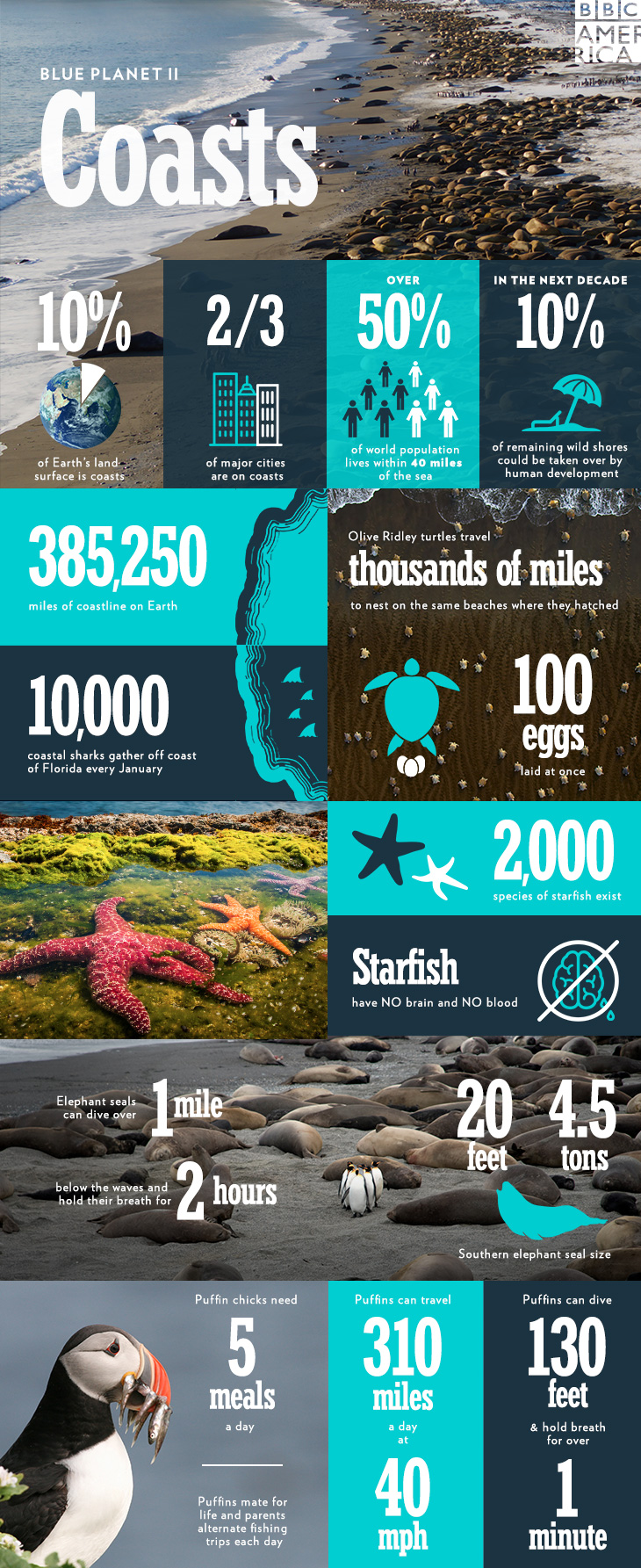 BPII_infographic_ep6_2