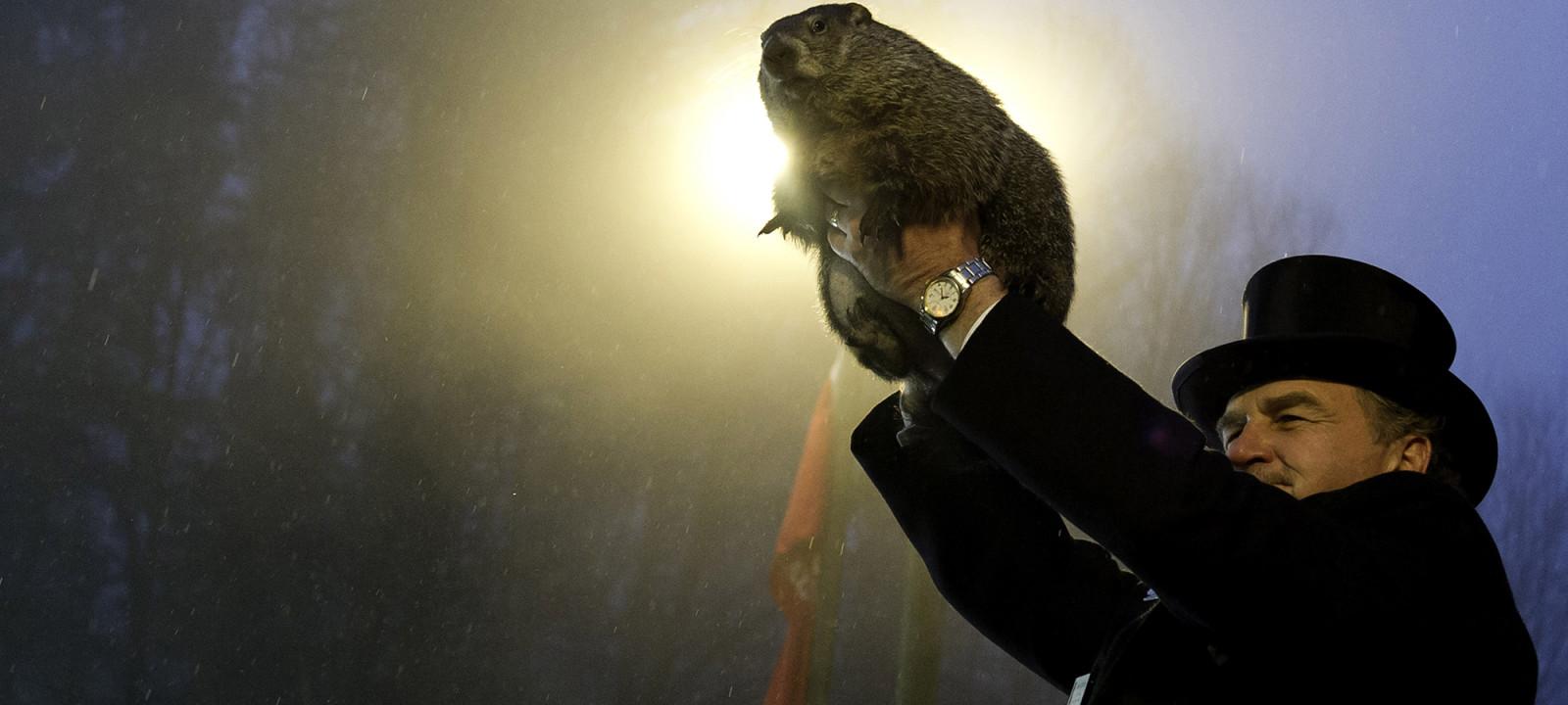 Punxsutawney Phil Makes Annual Forecast On Groundhog Day