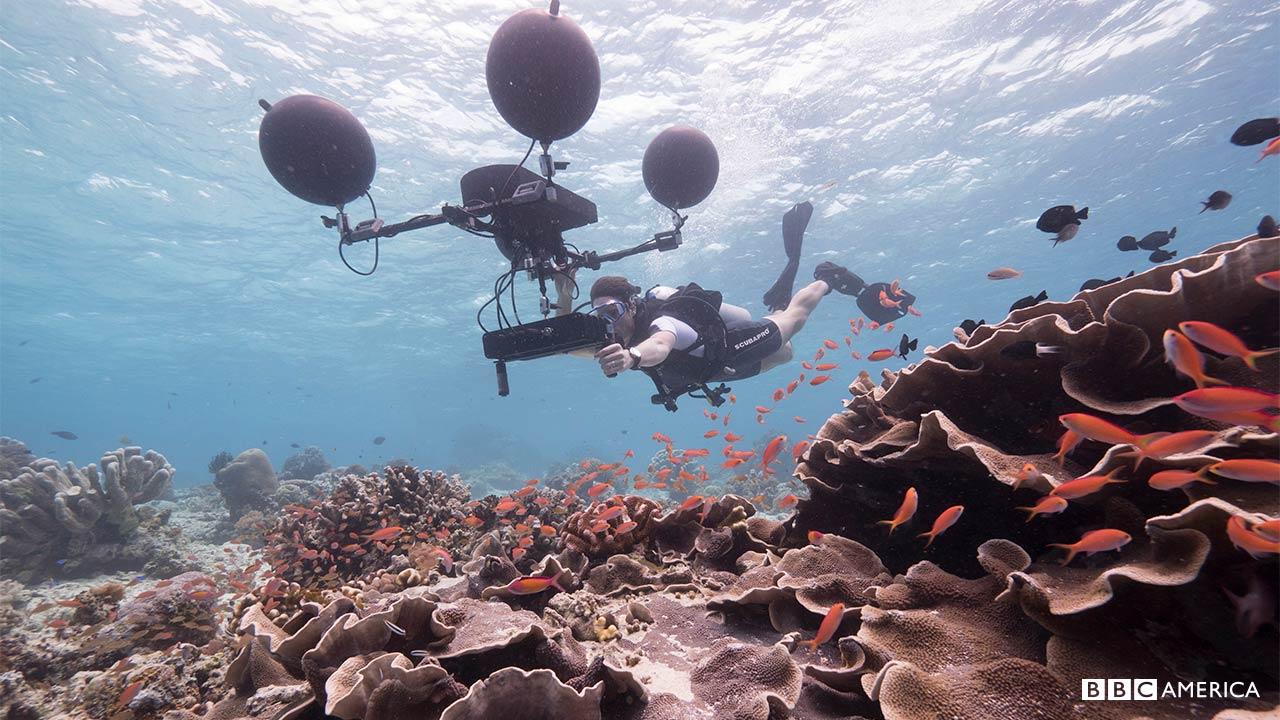 Behind The Scenes Photos Blue Planet Ii Bbc America