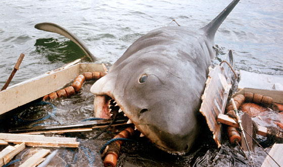 The Brodys Should Have Left Amity &#8211; How <I>Jaws</i> Lost Its Bite