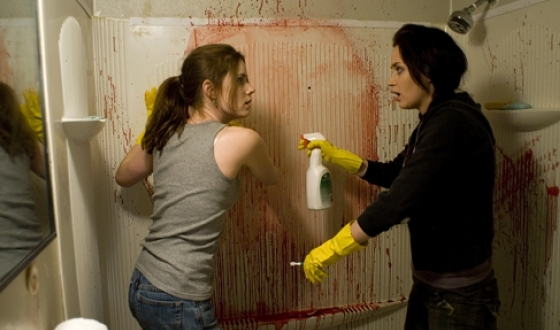 What to See – <I>Sunshine Cleaning</I>