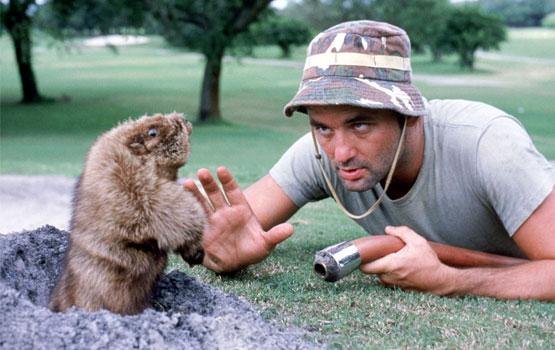 Top Ten Funniest Battles Between Man and Beast