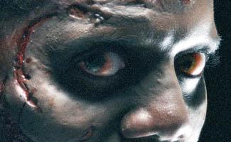 <em>The Walking Dead</em>'s Walkers Give <em>EW</em> Nightmares, Robert Kirkman Talks to <em>NY Magazine</em>