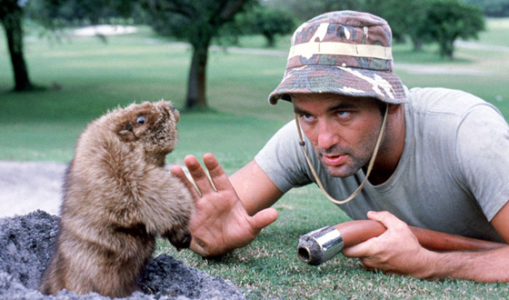 <em>Caddyshack</em>, <em>Tin Cup</em>, <em>Pat and Mike</em> &#8211; Which Golf Movies Score Above Par?