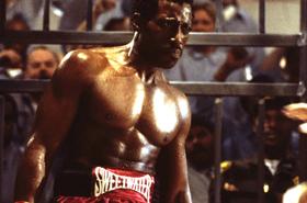 Movie Boxers Photo Quiz