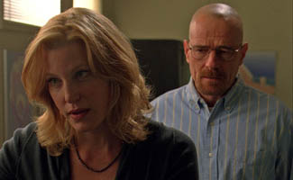 What You're Saying About Skyler's Role in Walt's Business