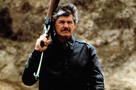 Charles Bronson's Guns Photo Quiz