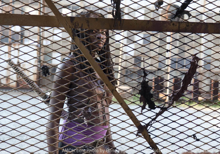 Michonne (Danai Gurira) in Episode 5 of The Walking Dead