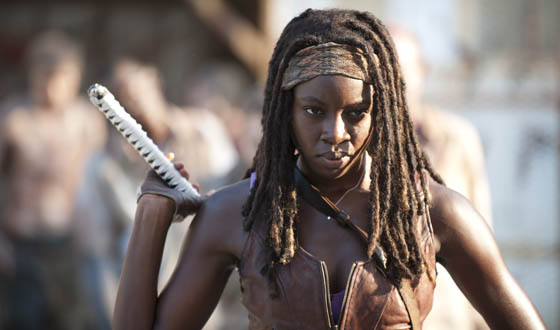 Image result for michonne