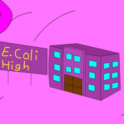 IFC_NYTVF_EColi-High_blog