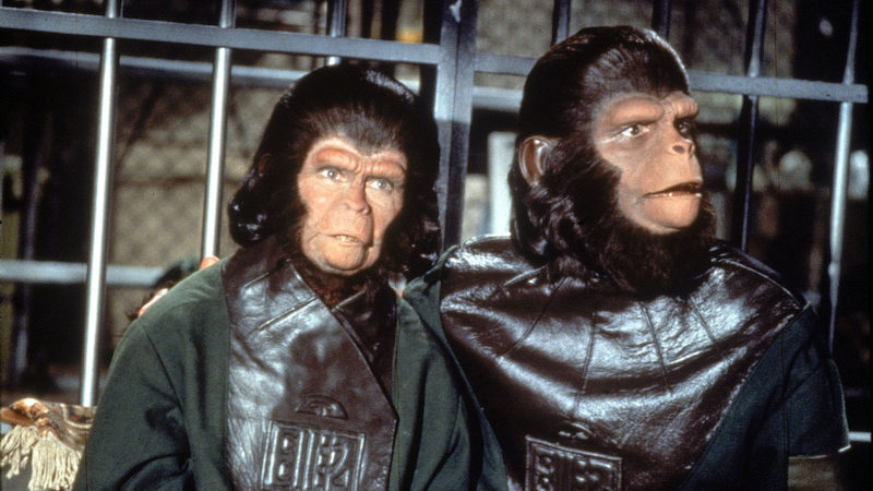 – Escape from the Planet of the Apes (1971) – Photo Credit: Unknown