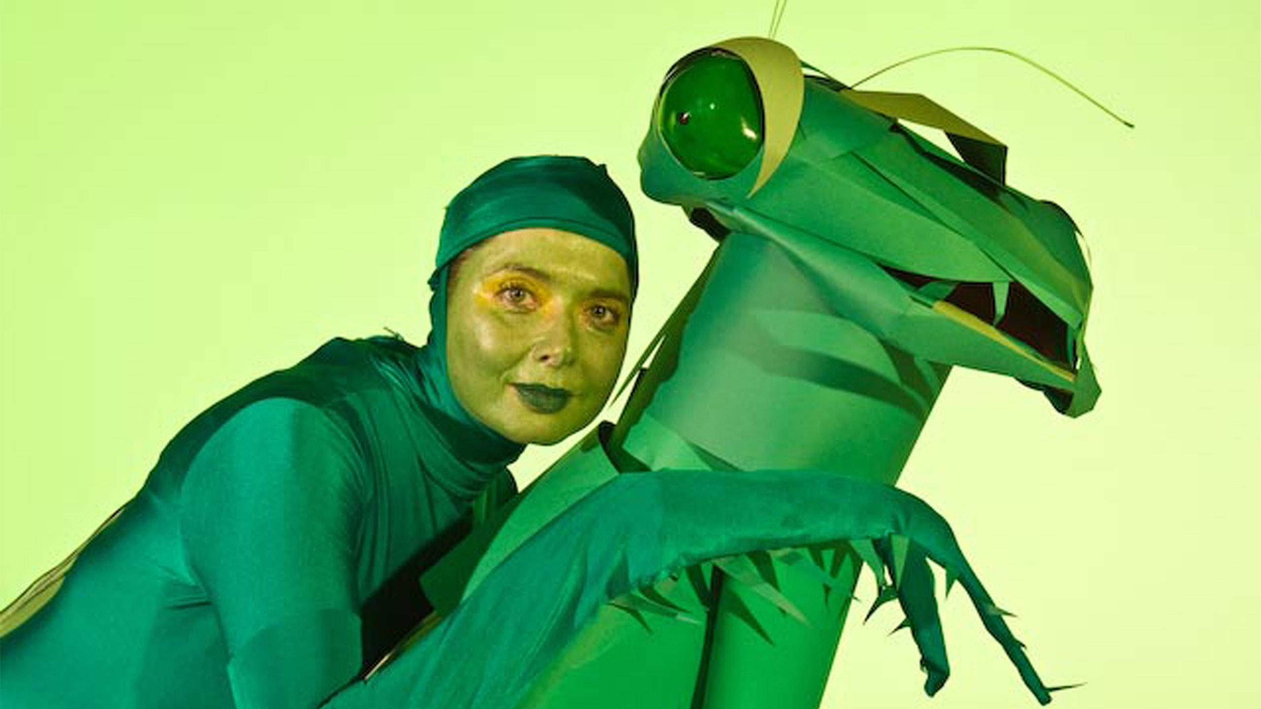 Green Porno  C2 B7 Praying Mantis
